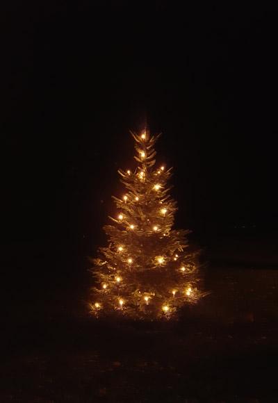 Christbaum mit Lichterschmuck